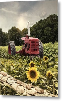 Metal Print featuring the photograph Sunny Acres by Robin-Lee Vieira