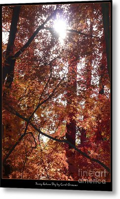 Sunny Autumn Day Poster Metal Print by Carol Groenen