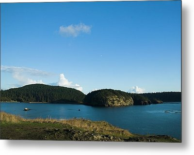 Metal Print featuring the photograph Sunny Day At Bowman Bay Park by Yulia Kazansky