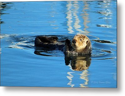 Sunny Faced Sea Otter Metal Print