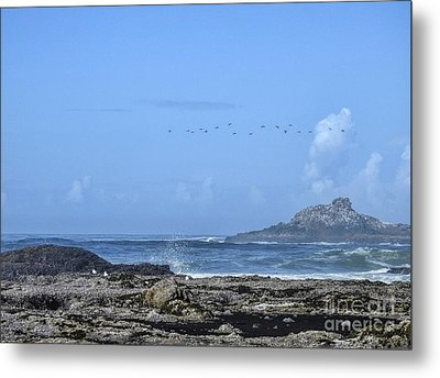 Metal Print featuring the photograph Sunny Morning At Roads End by Peggy Hughes