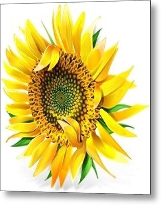 Sunny Metal Print by Now