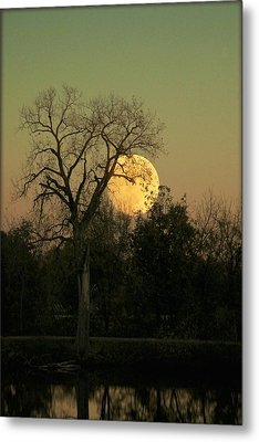 Metal Print featuring the photograph November Supermoon  by Chris Berry