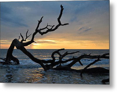 Sunrise At Driftwood Beach 1.2 Metal Print by Bruce Gourley
