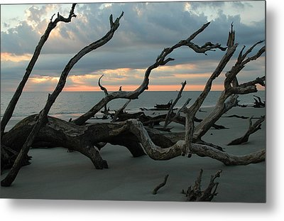 Sunrise At Driftwood Beach 4.1 Metal Print by Bruce Gourley