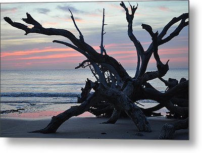 Sunrise At Driftwood Beach 5.1 Metal Print