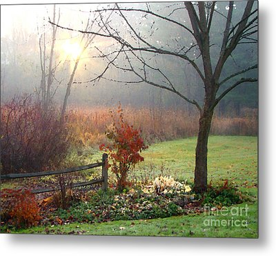 Sunrise Metal Print by Betsy Zimmerli