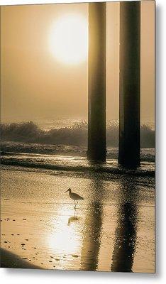 Metal Print featuring the photograph Sunrise Bird At Beach  by John McGraw