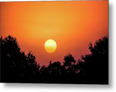 Metal Print featuring the photograph Sunrise Bliss by Shelby Young