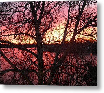 Sunrise Metal Print by Cassandra Donnelly