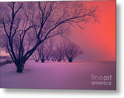 Sunrise Fog Metal Print by Ian McGregor