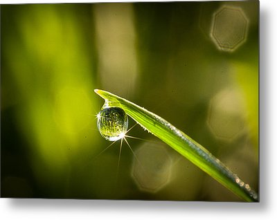 Metal Print featuring the photograph Sunrise In A Dewdrop by Monte Stevens