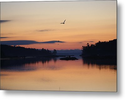 Metal Print featuring the photograph Sunrise In Blue Hill V by Greg DeBeck