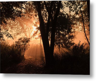 Sunrise In The Marsh 3 Metal Print by Joni Eskridge