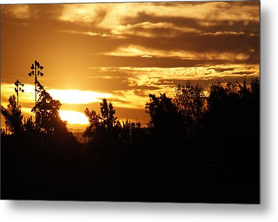 Sunrise Metal Print by Ivete Basso Photography