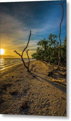 Sunrise On Lighthouse Beach Metal Print by Steven Ainsworth
