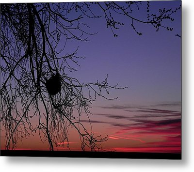 Sunrise On The Colorado Plains Metal Print by Adrienne Petterson