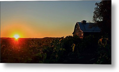 Metal Print featuring the photograph Sunrise On The Farm by Chris Berry