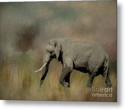 Sunrise On The Savannah Metal Print