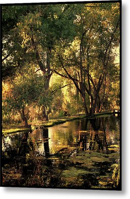 Metal Print featuring the photograph Sunrise Springs by Paul Cutright