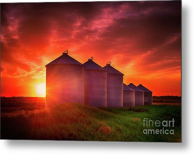 Sunrise Sublime Metal Print