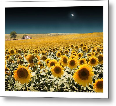 Suns And A Moon Metal Print by Mal Bray