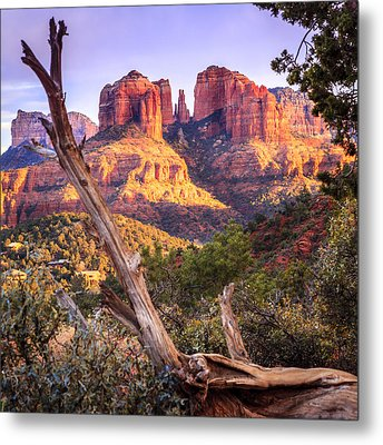 Sunset At Cathedral Rock Metal Print by Alexey Stiop