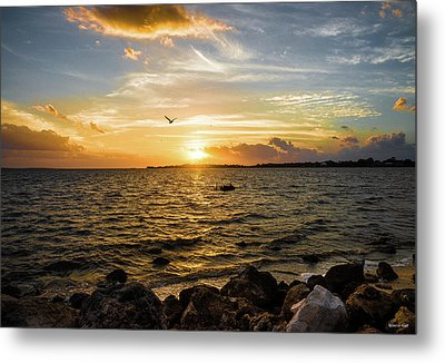 Sunset At Cedar Key Metal Print by Rebecca Hiatt