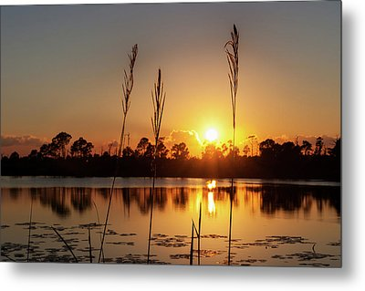 Metal Print featuring the photograph Sunset At Gator Hole 3 by Arthur Dodd