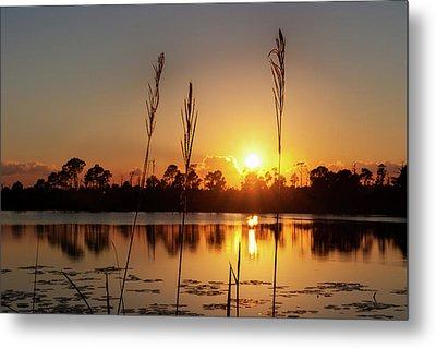 Sunset At Gator Hole 3 Metal Print by Arthur Dodd