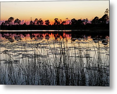 Metal Print featuring the photograph Sunset At Gator Hole by Arthur Dodd