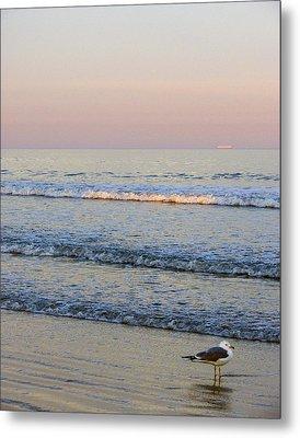 Sunset Atlantic Beach Florida Metal Print by Ann Tracy