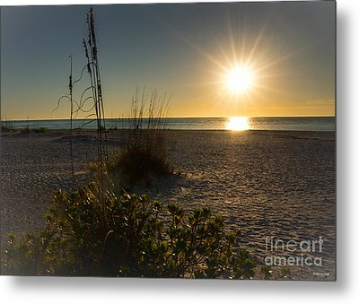 Sunset Beach Metal Print by Rebecca Hiatt