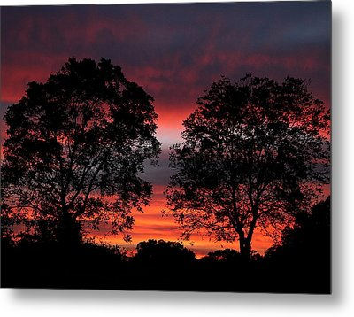 Sunset Behind Two Trees Metal Print