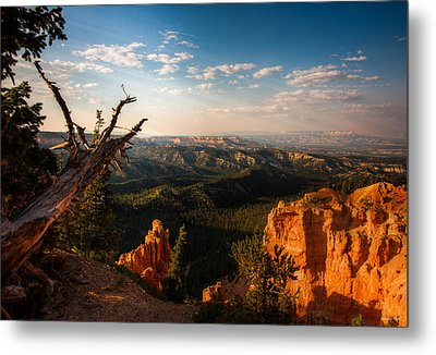 Sunset Bryce Metal Print by Rebecca Hiatt