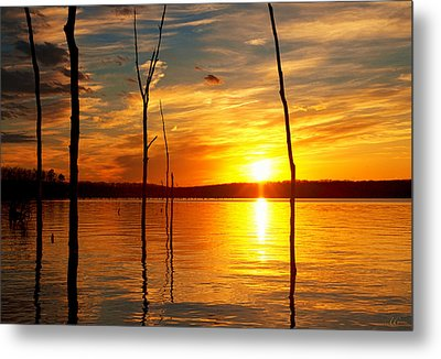 Metal Print featuring the photograph Sunset By The Water by Angel Cher