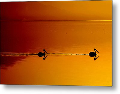 Sunset Cruising Metal Print by Laurie Search
