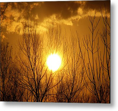 Sunset Metal Print by Dottie Dees