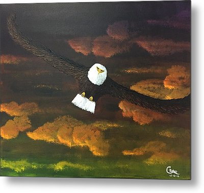 Sunset Eagle Metal Print