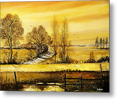 Sunset Fields Metal Print by Andrew Read