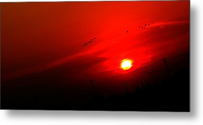 Sunset Geese Leaving Disappearing City - 0814  Metal Print