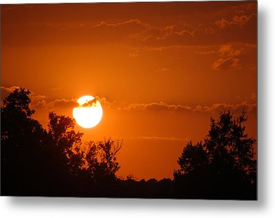 Metal Print featuring the photograph Sunset In Charleston by Donna Bentley