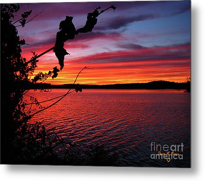 Metal Print featuring the photograph Sunset In Pennsylvania by Donna Brown