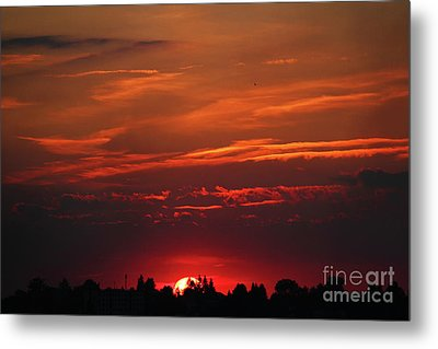 Sunset In The City Metal Print by Mariola Bitner