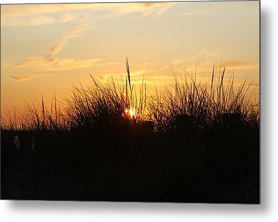 Sunset In The Grass Metal Print by Chuck Bailey
