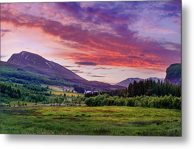 Metal Print featuring the photograph Sunset In The Meadow by Dmytro Korol