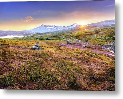 Metal Print featuring the photograph Sunset In Tundra by Dmytro Korol