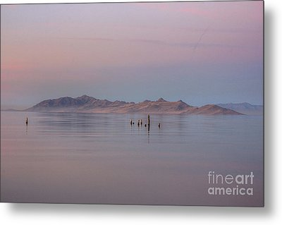 Metal Print featuring the photograph Sunset On Antelope Island by Spencer Baugh