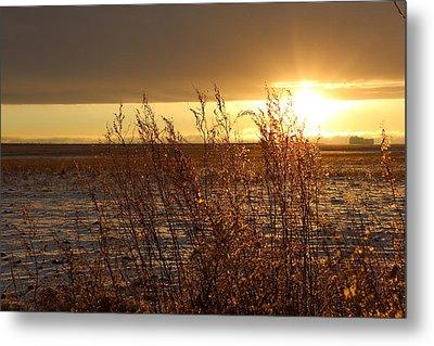 Sunset On Field Metal Print