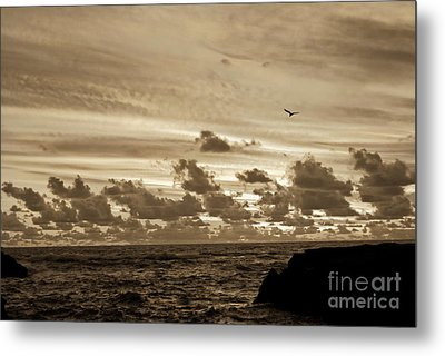 Metal Print featuring the photograph Sunset On The Tasman Sea by Yurix Sardinelly